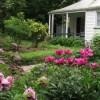 À DÉCOUVRIR – Giorgia Volpe dans le jardin de la maison Henry-Stuart