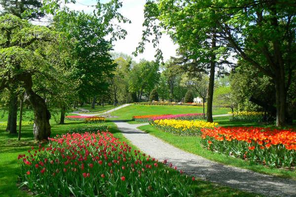 Parc du bois de coulonge for Les plus beaux jardins anglais