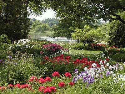 Botanical gardens montreal admission fee garden ftempo The garden of forking paths summary