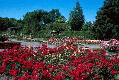 Les jardins du qu bec the gardens of quebec for Jardin botanique montreal 2016